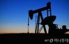 국제유가, 산유국 회동 기대감에 급등…WTI 2%↑