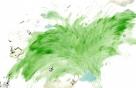 초록빛의 향연
