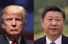 시진핑 '한·중 역사' 설명하자… 트럼프 '쉽지 않겠네'