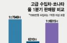 쏘나타보다 잘 팔린 '수입차'… 車도 '빈익빈 부익부'