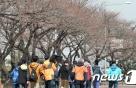 [24일 날씨]맑고 쾌청한 날씨…미세먼지 '보통' 수준