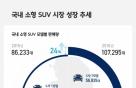 급성장하는 소형 SUV… 2016년 판매량 '전년比 24%↑'