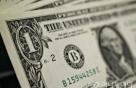 달러, 연준 통화정책회의 앞두고 소폭 하락