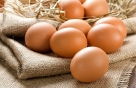 계란 Q&A, 너의 이름은