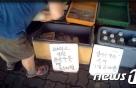 '세균 득실' 콩국·식혜, 아파트에 대량유통한 업체 적발