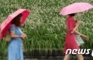 [19일 날씨] 전국 곳곳에 소나기…남부 다시 무더위