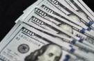 달러, 다수 경제지표 발표 속에 약세...달러 인덱스, 분기로 2.8%↑