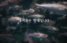 수협은행, 명태살리기 바이럴 영상 23일 공개