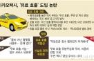 """카카오택시 '유료콜' 국토부·서울시 제동?…""""사전협의 없었다"""""""