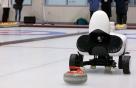 "AI 컬링대회, 아직 말하지 않은 것들…""로봇이 왜 졌냐면"""