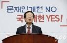 이석연 전 법제처장, 서울시장 불출마…洪제안 거절
