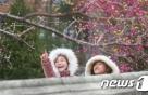 [오늘날씨] 꽃샘추위…낮부터 기온 ↓·바람 쌩쌩