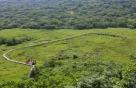신록 우거진 6월…희귀동식물 보러 '람사르습지' 가볼까
