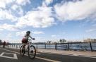자전거 타다 '쾅' 6월 최다, 공짜 보험 아셨나요?