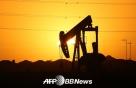 OPEC·러 등 산유국들 '하루 100만배럴' 증산 합의