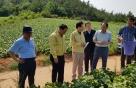 김광수 NH농협금융 회장, 휴가 중 폭염 피해 농가 방문