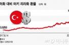 터키 리라화 가치 '뚝'…韓 자동차·가전 타격 '제한적'