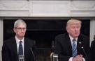 """트럼프 """"美서 만들면 안 되겠니?"""" 애플·포드 """"글쎄"""""""