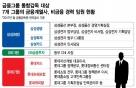 '금융' 모르는 그룹임원, 금융계열사 이동 막히나