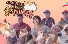 """[MUFFLER] """"웰시코기, 유행따라 키우지 마세요"""" 4인7견 개터뷰"""