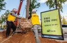 SBI저축은행, 암은행나무 이식사업 진행