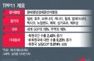 환태평양 거대 경제권 탄생…TPP11 올해 말 발효