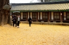 [내일 날씨]때이른 초겨울 추위…서울 최저 2도