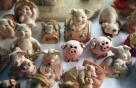 """""""황금돼지 기운 받자""""…복·돈' 부르는 '돼지투어' 떠나볼까"""