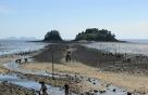 해남군 신비의 바닷길 대섬에 어촌체험공원 조성