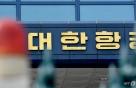 국토부 '비상체제' 양대 항공사 호출…긴급안전회의