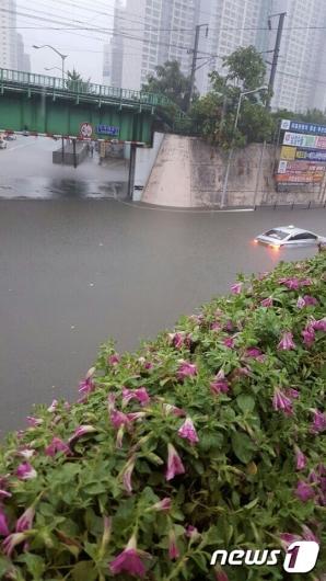 [사진]'부산 폭우에 잠긴 차량들'