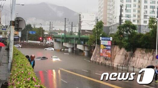 [사진]'빗물에 잠긴 도로'
