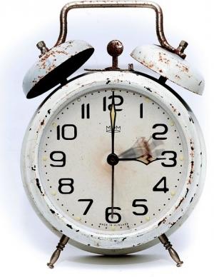 하루는 1440분…개구리를 먹는 것이 시간관리의 핵심