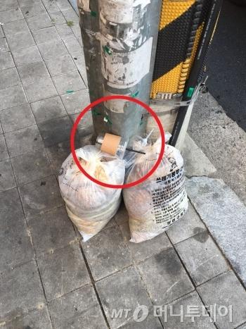 여기가 '쓰레기통' 입니까?