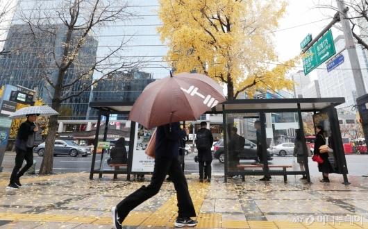 [사진]늦가을 비와 함께 출근