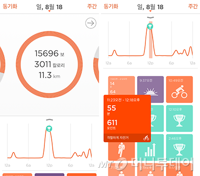 샤인 앱 사용화면 캡처. 왼쪽은 그날의 전체 운동량을, 오른쪽은 세부 활동내역을 아이콘으로 보여준다