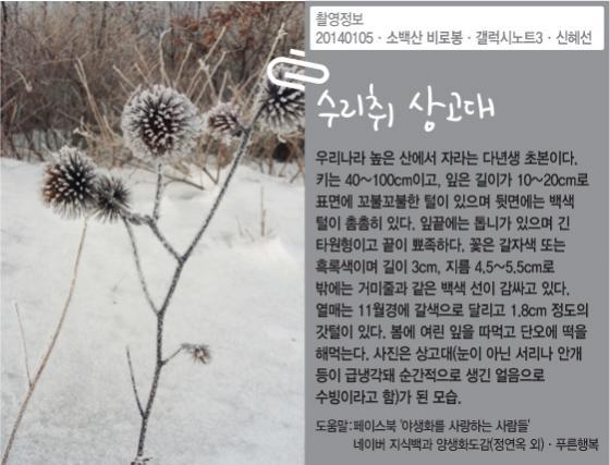 [신혜선의 잠금해제]코레일 평균 연봉 6200만원, KBS는?