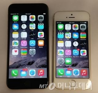 아이폰6(왼쪽)와 아이폰5S / 사진=이학렬 기자