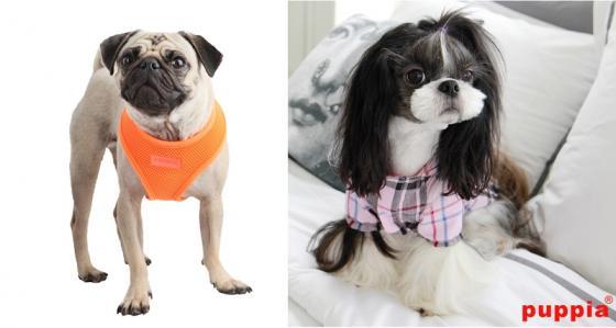 미국에 진출한 한국 중소기업 puppia의 애완용품/사진=puppia 홈페이지
