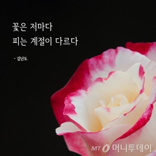 [라온힐조] 꽃피는 계절은 저마다 다르다