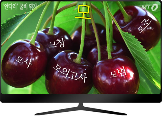 /사진=pixabay.com (TV 그림 안쪽 것)