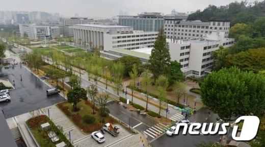 서울 연세대학교 내 보행자 전용 거리로 새롭게 단장한 백양로의 모습. /뉴스1 © News1 손형주 기자