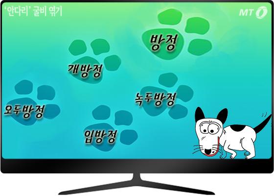 '깨방정' 아니 '개방정' 떨지마!