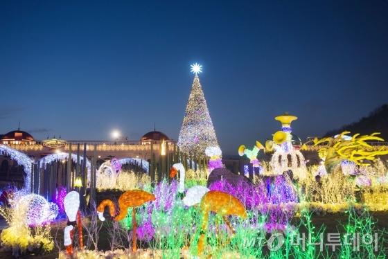 에버랜드 별빛 동물원/사진제공=에버랜드