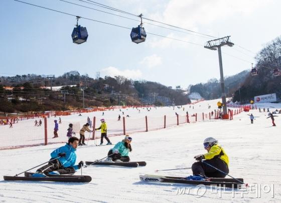 비발디파크는 스키장을 처음 찾은 초보자들이 안전하게 스키를 즐길 수 있도록 매일 무료 강습을 실시한다/사진제공=대명리조트
