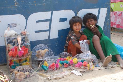 가난이 아이들의 뇌 구조마저 변화시킨다는 연구결과가 최근에 발표됐다/사진=morgueFile free photo<br>