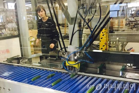 네덜란드 비스콘 그룹(Viscon Group) 본사 공장에서 직원이 상품 분류 자동화 기계를 시험하고 있다./사진=배영윤 기자