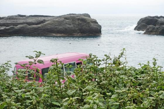 타이동의 해변을 달리다 보면 만날 수 있는 풍경. /사진=김유진 기자