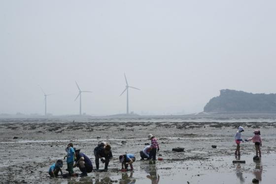 경기 안산시 탄도의 풍력발전기가 돌아가는 해변 풍경. /사진제공=한국관광공사