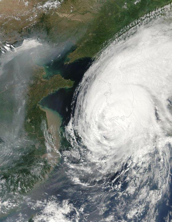 2002년 발생한 태풍 루사. 우리나라는 태풍 루사로 246명이 실종됐고 5조1479억원의 피해를 입었다. /사진=위키피디아